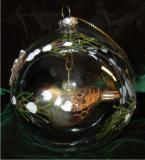 Forest Finch Inside Glass Dome Christmas Ornament Personalized by Russell Rhodes