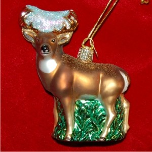 Whitetail Deer Glass