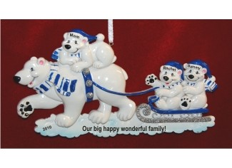 Polar Bear Sleigh -- Single Parent Family